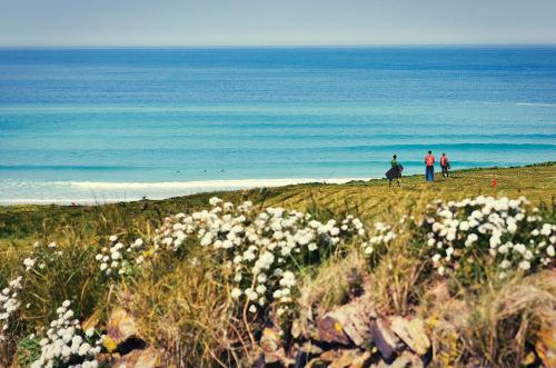 gallery-surf-coaching-weekend-lifestyle-3
