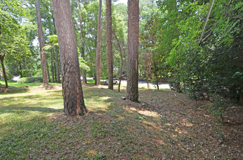 8 Front yard 2