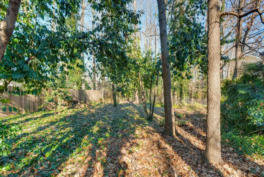 2556 midvale Forest Drive-large-041-43-Back Yard-1500x1000-72dpi