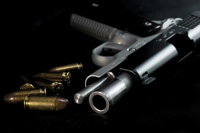 US gun maker Colt purchased by Czech firm