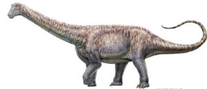 Scientists in Chile discover the remains of a dinosaur that eats plants in the middle of the driest desert in the world: The Tribune India