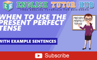 When to Use the Present Perfect Tense   With example sentences