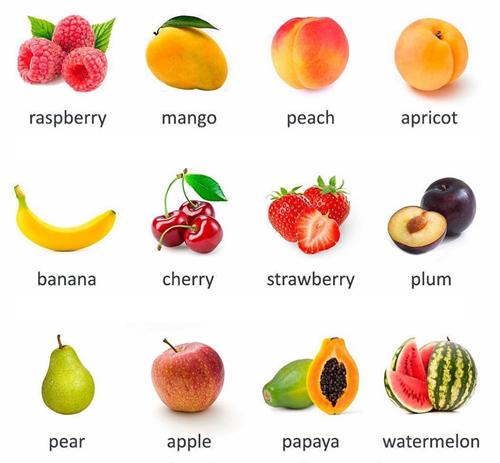 Vocabulary Fruit English Your Way
