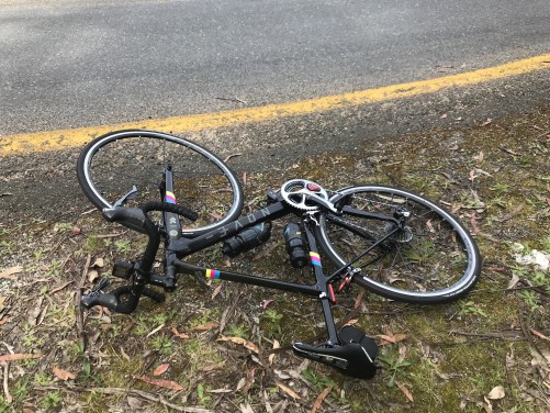 A bike lying on the side of the road