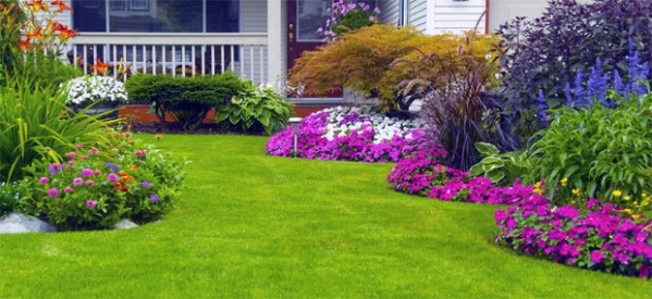 lawn care landscaping & leaf removal