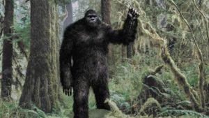 VIDEO: Navštěvuje ženu pravidelně navštěvuje Bigfoot?
