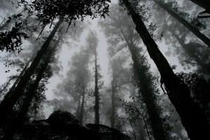 Co se skrývá v tajuplném Údolí duchů?