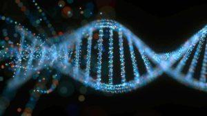 DNA: Vyrábíme lidi v laboratořích?