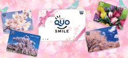 いろいろなデザインのQUOカード