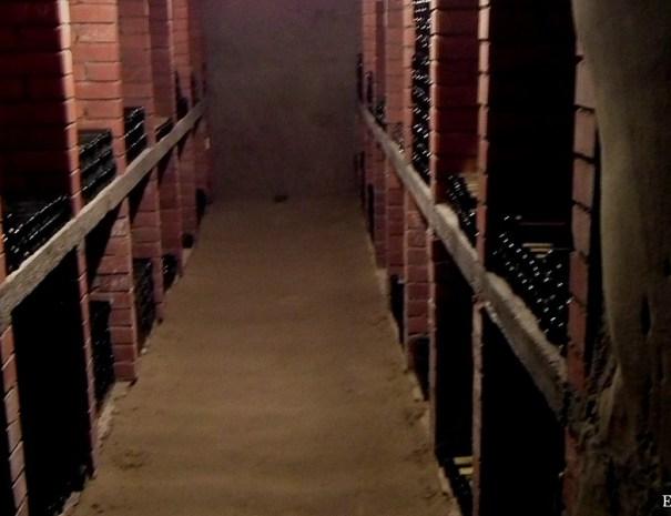 Bizeljsko wine tasting tour repnice wine cellar