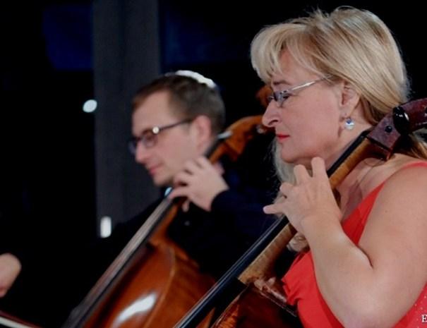 Musica Di...Vina koncert čelistov