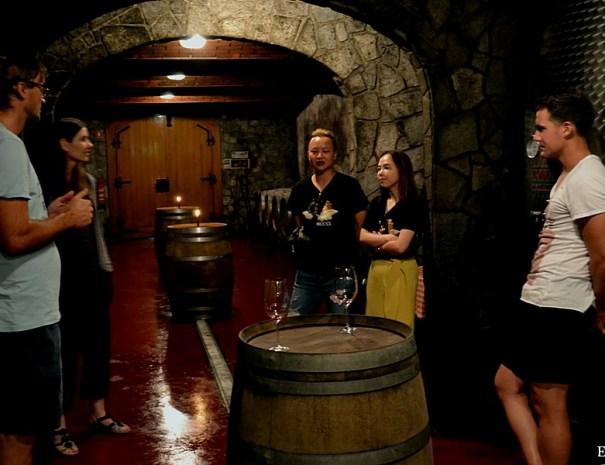 Wine tasting tours Slovenia always fun with slovneian wine 4