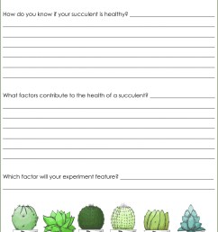 Is It Fair Use Worksheet   Printable Worksheets and Activities for  Teachers [ 1920 x 1440 Pixel ]