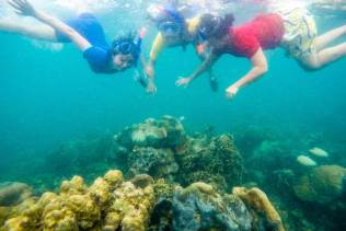 Snorkeling in Abang Island