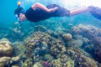 Snorkeling in Abang Island with magneficent underwater view