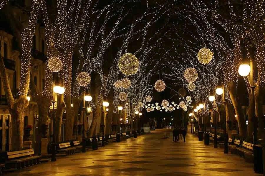 paseo del Born, palma, luces navidad, born 8