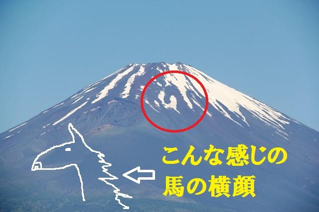 富士山 雪形 農馬 御殿場 田植え