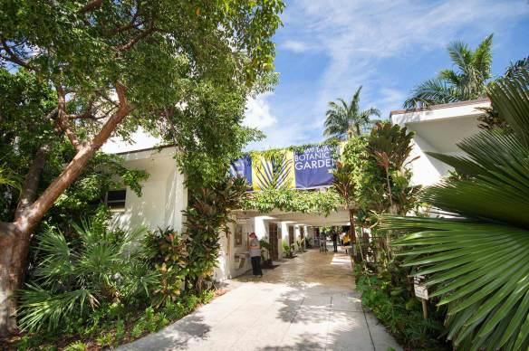 miami-beach-botanical-garden-6