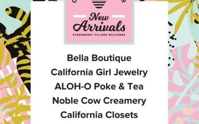 Strawberry Village Unveils Its Latest Arrivals: Poke, Ice Cream, Jewelry, Women's Apparel and Custom Closets