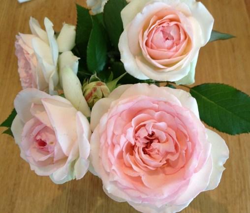 7月のピエールドゥロンサールを花瓶に02