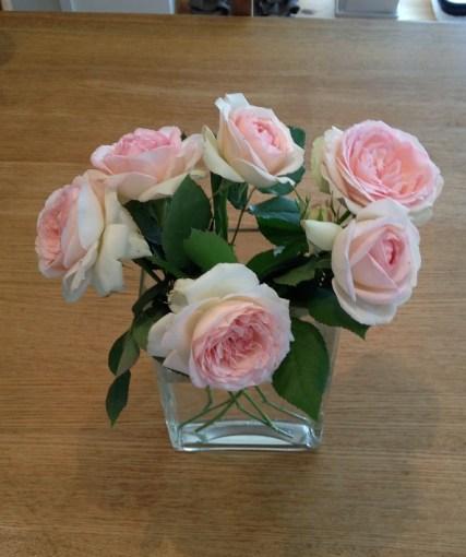 7月のピエールドゥロンサールを花瓶に01