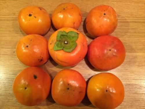 まつおえんげいレビュー購入した柿
