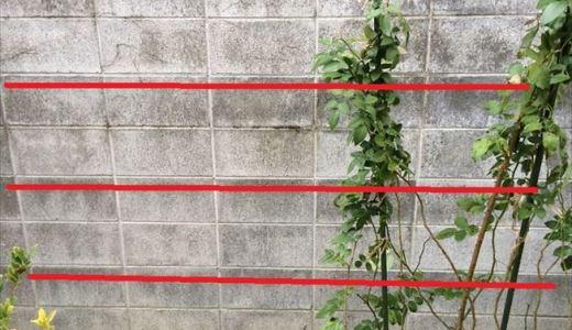 ブロック塀にバラの誘引用ワイヤーを設置しました