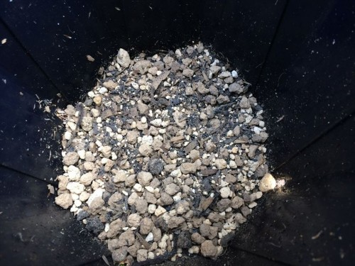 肥料の上に土を入れる