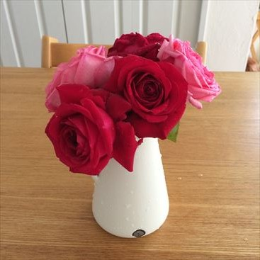 リパブリックドゥモンマルトルを花瓶に