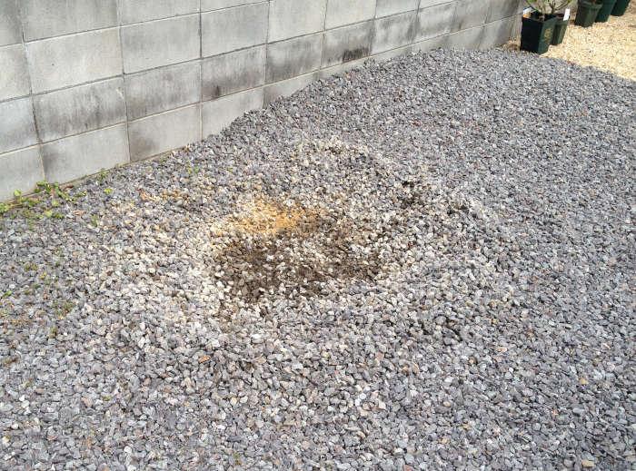 花壇作成前の砂利