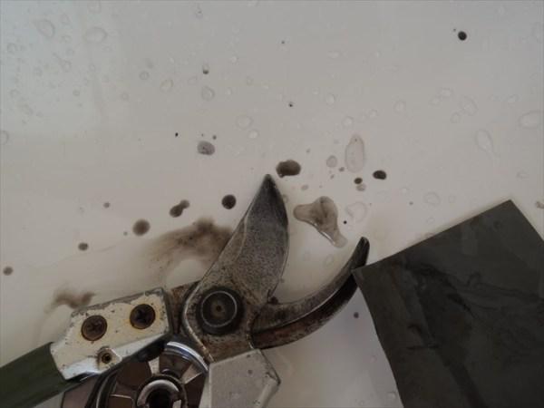 磨くと黒い水が出る