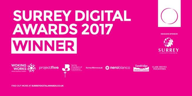 Surrey Digital Awards Winner - Enjoy the Adventure - Work Together