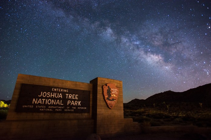 Joshua Tree at night Enjoy The Silence