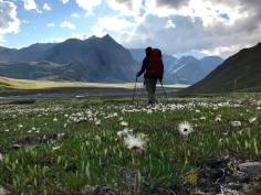 Credit: Michael Meehan Denali National Park and Preserve