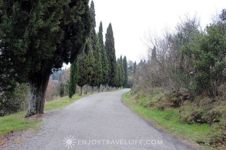 Path to Bramasole | Cortona | Italy