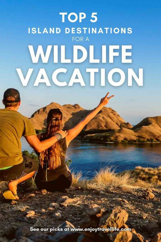 Top 5 Island Destinations for a Wildlife Vacation - Pinterest Pin