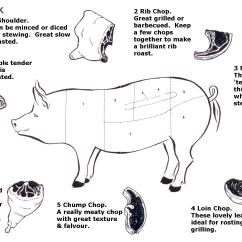 Pork Butcher Cuts Diagram House Wiring Pdf 1000 43 Images About So This Is What A Vagaina Looks Like