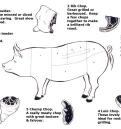pig diagram meat [ 2035 x 1314 Pixel ]