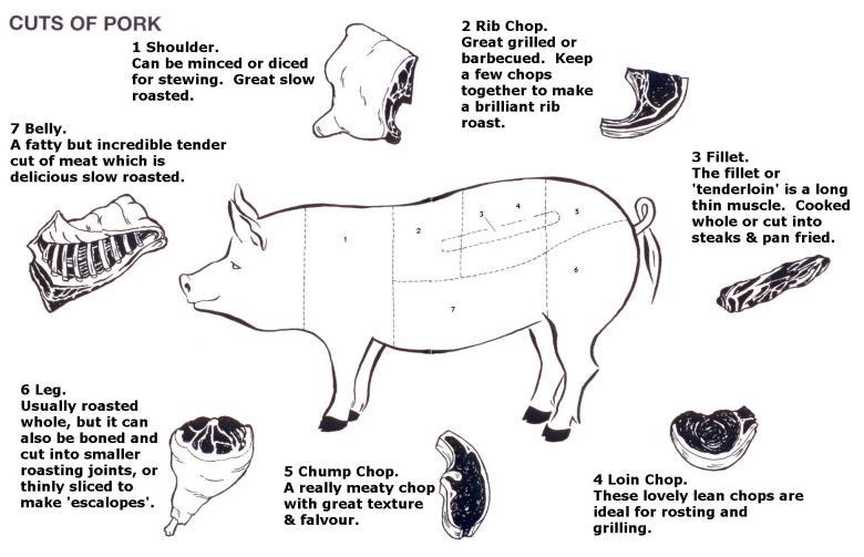parts of a pig | Enjoy xo
