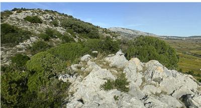 le Plateau de Tautavel