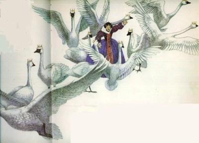 Les Cygnes sauvages - illustration Susan Jeffers
