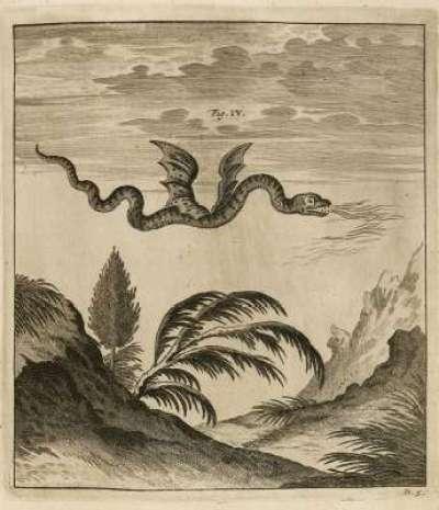 Dragon observé au mont Pilate –  Ouresiphoites Helveticus, sive itinera per Helvetiae alpinas regiones, 1723.