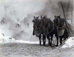 Alfred Stieglitz - untitled (hordes, Winter) - 1910