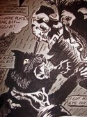 Edgar_Allan_Poe__The_black_Cat_by_scarletstealth123