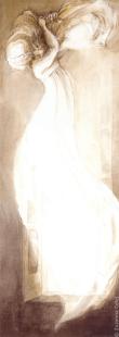Suzanne Celej - cortina
