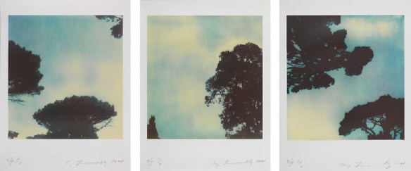 Cy Twombly (Am. 1928-2011), Trees, 1994