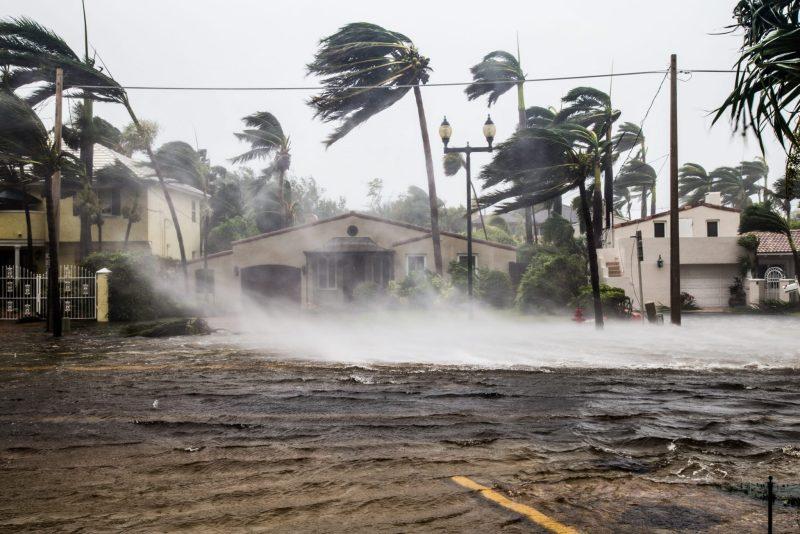 Como prepararse para un desastre natural