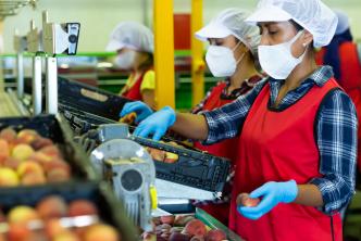 Mujeres trabajadores