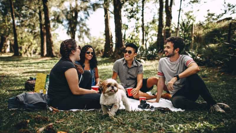 consejos para organizar un pícnic