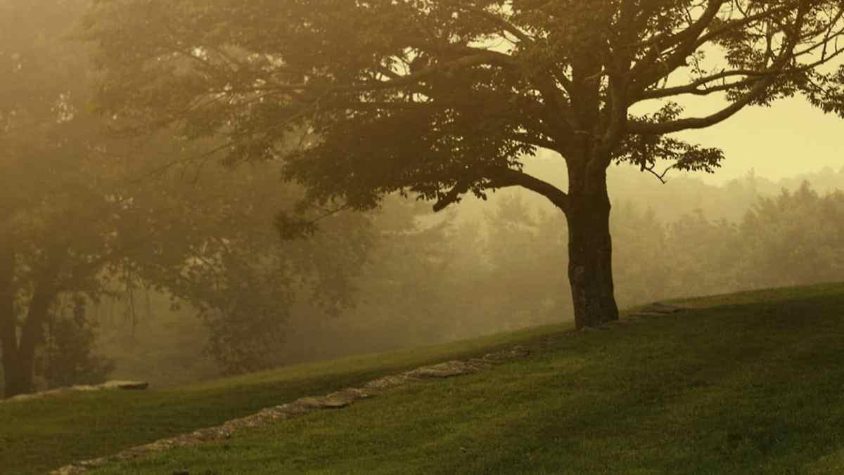 subvenciones para financiar 14 parques